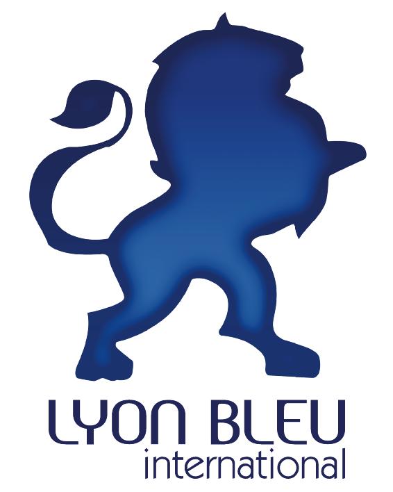 Cours De Francais A Lyon Avec Bleu International