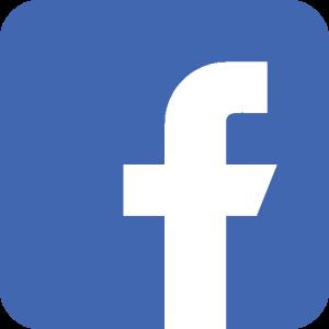 Facebook Lyon Bleu
