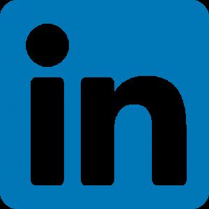 LinkedIn Lyon Bleu