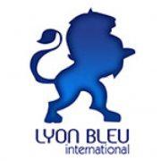 (c) Lyon-bleu.fr